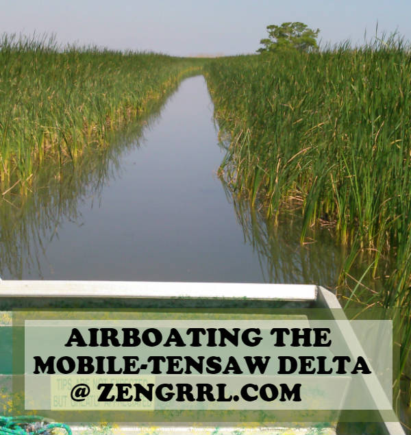 Airboating on the Delta is a Must-Do in Mobile Alabama at zengrrl.com